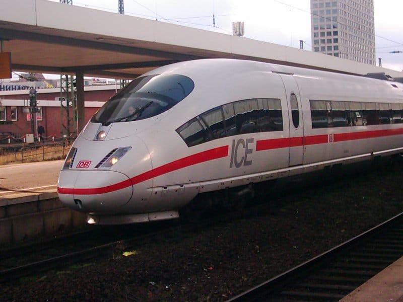Schäferhund im Zug mitnehmen