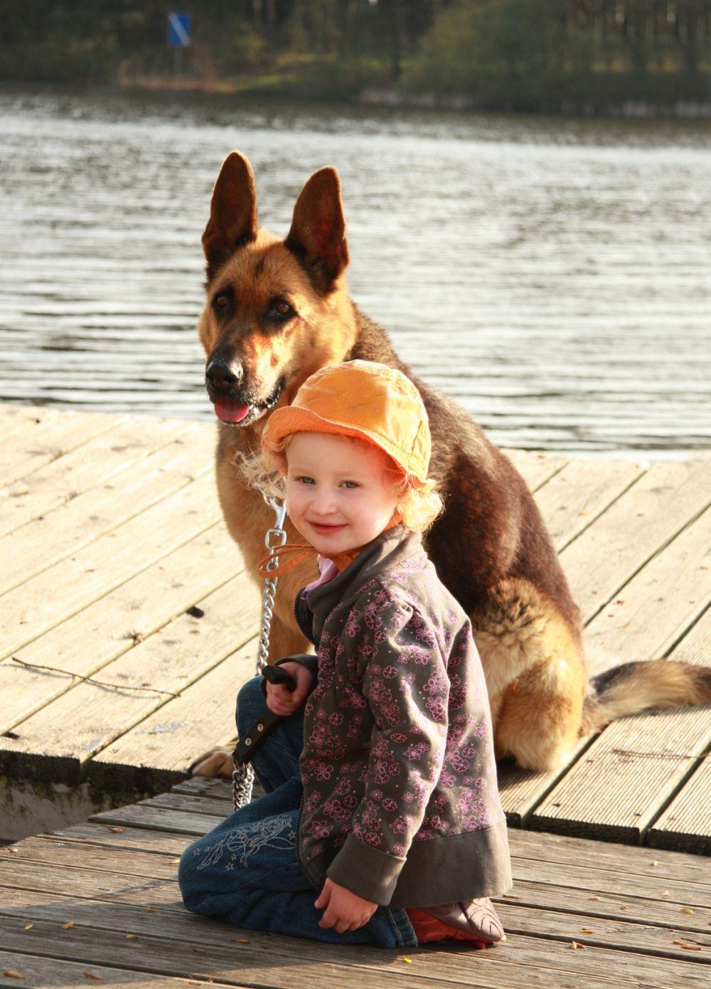 Urlaub mit Schäferhund