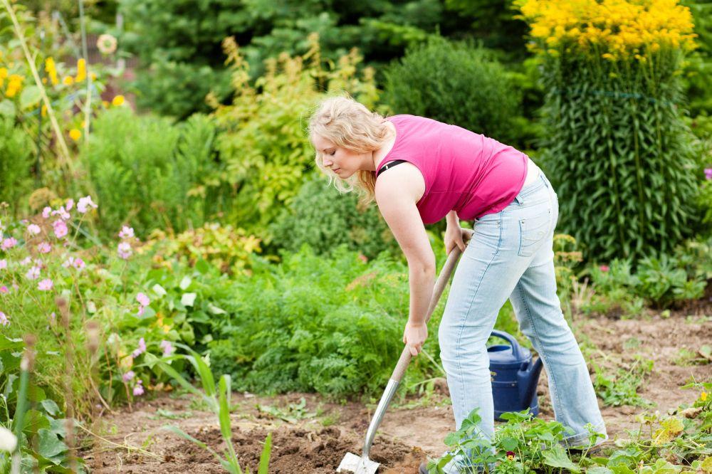 Meinen Schäferhund im eigenen Garten vergraben. Worauf muss ich achten?
