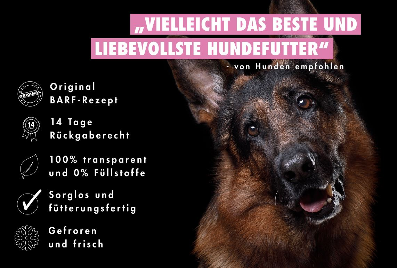 Schäferhund BARFen - Einfach und mit ganz viel Liebe!