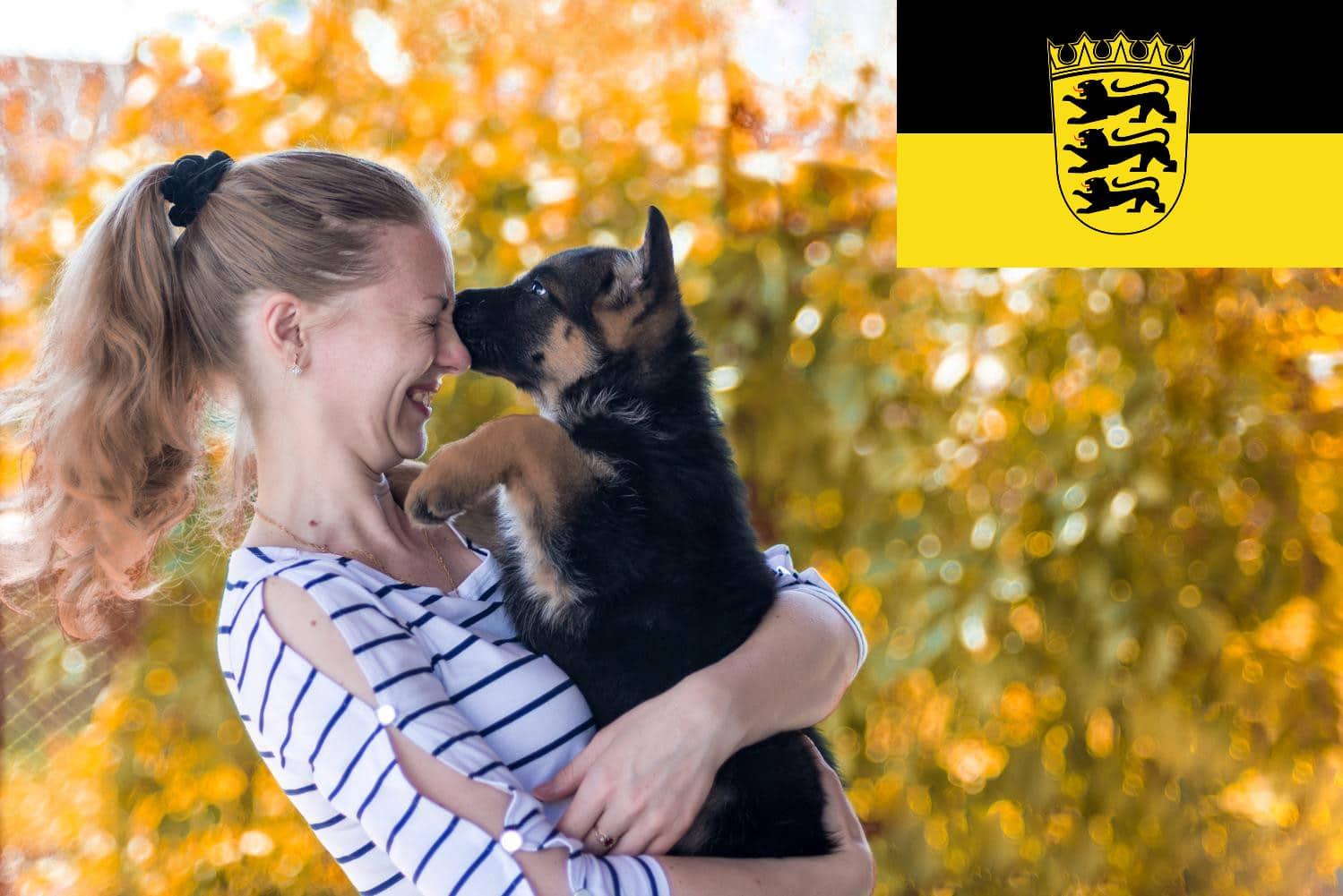 Schäferhund Züchter und Welpen in Baden-Württemberg